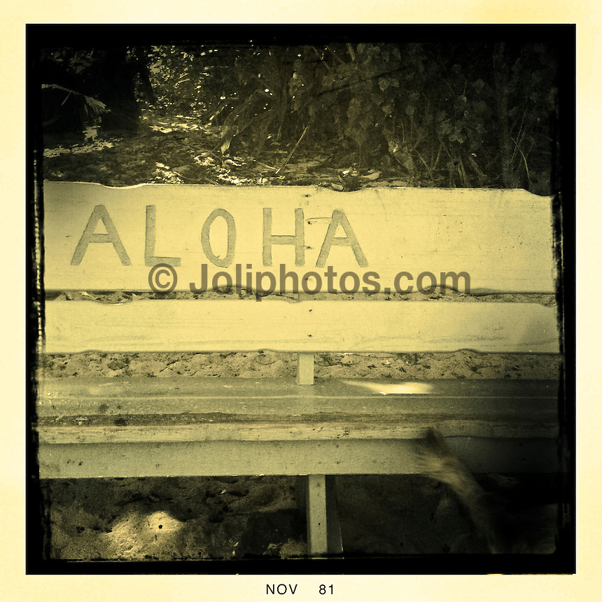 North Shore/Oahu/Hawaii (Saturday, November 20, 2011) – Images from around the North Shore.. Photo: joliphotos.com