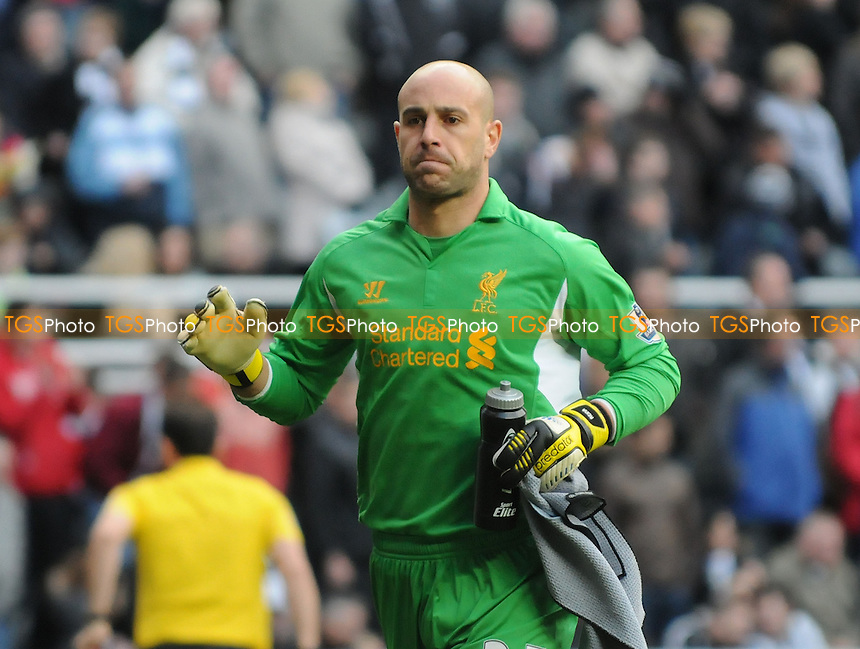 Liverpool goalkeeper Pepe Reina - Newcastle United vs Liverpool - Barclays Premier League Football at St James Park, Newcastle upon Tyne - 27/04/13 - MANDATORY CREDIT: Steven White/TGSPHOTO - Self billing applies where appropriate - 0845 094 6026 - contact@tgsphoto.co.uk - NO UNPAID USE