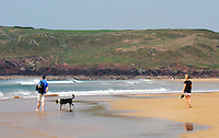 COPY BY TOM BEDFORD<br /> Pictured: Freshwater West beach in Pembrokeshire, Wales, UK. STOCK PICTURE<br /> Re: A dog was hailed a hero for rescuing a holidaymaker's false leg when it was swept into the sea.<br /> The wire-haired German pointer called Gertie dived into the waves and came back with the prosthetic limb.<br /> Gertie and her owner John Dooner, 71, were on a beach when the woman's leg floated away after removing it to sunbathe.<br /> John threw a stone towards the plastic leg and 18-month-old Gertie loves a game of fetch.<br /> Artist John said: &quot;She saw the splash and dived into the water - it's her favourite game.<br /> &quot;She came back with the only thing that was floating - the woman's leg.<br /> &quot;The woman was delighted to get it back and Gertie is getting a big bone as a reward.&quot;<br /> The holidaymaker, in her late sixties, was sunbathing at Freshwater West, Pembrokeshire, when Gertie sprang into action.
