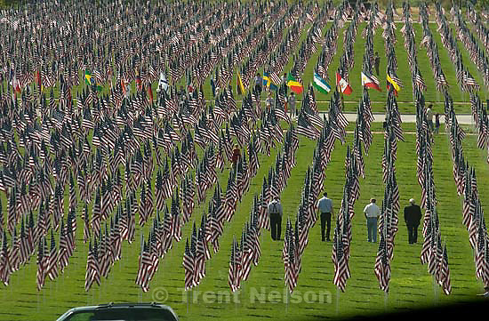 A healing field containing 3,412 US flags south of the Sandy City Hall Thursday, each flag in memory of a lost life in the September 11, 2001 terrorist attacks.&amp;#xA; 09/11/2003<br />