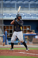 Bradenton Maruaders Raul Hernandez (29) bats during a Florida State League game against the Charlotte Stone Crabs on August 7, 2019 at Charlotte Sports Park in Port Charlotte, Florida.  Charlotte defeated Bradenton 3-2 in the second game of a doubleheader.  (Mike Janes/Four Seam Images)