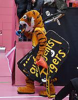 Basketball  1. Bundesliga  2016/2017  Hauptrunde  12. Spieltag  04.12.2016 Walter Tigers Tuebingen - ratiopharm Ulm Tigers Maskottchen Walter enttaeuscht nach dem verlorenen Derby