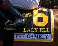 ARCADIA, CA. MAY 27: #6 Lady Eli's saddle towel before the running of the Gamely Stakes (Grade l) on May 27, 2017 at Santa Anita Park in Arcadia, CA (Photo by Casey Phillips/Eclipse Sportswire/Getty Images)