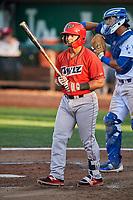 Jeyson Sanchez (22) of the Orem Owlz bats against the Ogden Raptors at Lindquist Field on September 2, 2017 in Ogden, Utah. Ogden defeated Orem 16-4. (Stephen Smith/Four Seam Images)