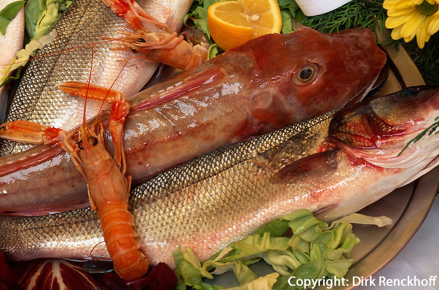 Italien, Elba, Marina di Campo, Fischgerichte im Restaurant L'Aragosta