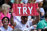 A fan celibates an English try during the iRB Marriott London Sevens at Twickenham on Sunday 13th May 2012 (Photo by Rob Munro)