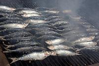 Portugal, Algarve, Portimao: Grilling Sardines