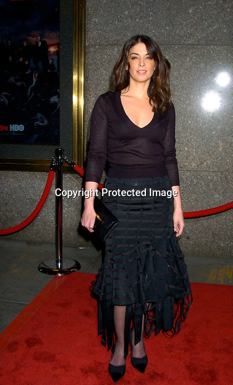 "Annabella Sciorra....at the World Premierer of the fifth season of the HBO series ..""The Sopranos"" on March 2, 2004 at Radio City Music Hall.  Photo by Robin Platzer, Twin Images"