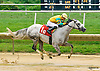 Sweet Maxine winning at Delaware Park on 9/1/16