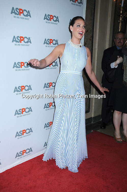 Honoree Katherine Heigl in Lyn Devin dress at The 13th Annual ASPCA Bergh Ball at the Plaza Hotel in New York City on April 15, 2010.