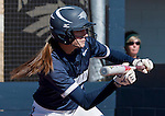 March 7, 2012:   Nevada Wolf Pack  Sacramento State Hornets against the Nevada Wolf Pack   Sacramento State Hornets during their NCAA softball game played at Christina M. Hixson Softball Park on Wednesday in Reno, Nevada.