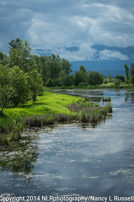 Kootenai National Wildlife Refuge wetlands with the Cabinet mountains in the background in north Idaho
