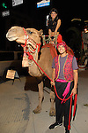 "Juan Buendia and Amara DePaul and a camel set the scene  outside the Children's Museum ""Arabian Nights"" Gala at The Corinthian Saturday  Oct. 14,2006.(Dave Rossman/For the Chronicle)"