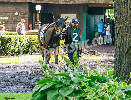 Browse before The Delaware Oaks (gr 3) at Delaware Park on 7/9/16