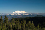 Mount St. Helens, Gifford Pinchot National Forest