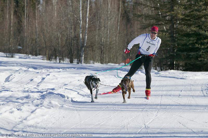 Ski jouring races, Fairbanks, Alaska