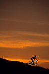 Silhouetted man on bicycle going down a hill at sunset