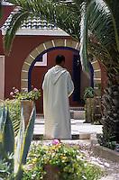 """Afrique/Maghreb/Maroc/Essaouira : Résidence """"Dar Mimosas"""" route d'Agadir, détail du jardin"""