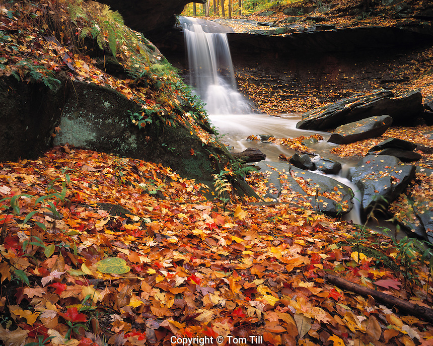 Blue Hen Falls, Cuyahoga Valley National Park, Ohio   River valley and forest south of Cleveland
