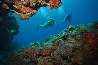 Scuba Divers at Cow Rock<br />
