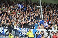 VOETBAL: HEERENVEEN: 15-09-2013,  Abe Lenstra Stadion, SC Heerenveen-FC Groningen, publiek, ©foto Martin de Jong