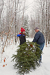 Father and daugher dragging a freshly cut tree for Christmas