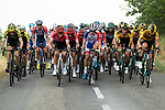 The peloton during Stage 1 of Criterium du Dauphine 2020, running 2185km from Clermont-Ferrand to Saint-Christo-en-Jarez, France. 12th August 2020.<br /> Picture: ASO/Alex Broadway | Cyclefile<br /> All photos usage must carry mandatory copyright credit (© Cyclefile | ASO/Alex Broadway)