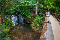 Whatcom Falls and Foot Bridge (Fisheye), Whatcom Falls Park, Bellingham, WA