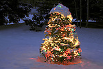 Holiday Christmas tree set outdoors, covered in colored lights and fresh snow. Boulder, Colorado, USA .  John leads private photo tours in Boulder and throughout Colorado. Year-round Boulder photo tours.
