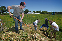 NWA Democrat-Gazette/BEN GOFF @NWABENGOFF<br /> Devyn Bush (from left), Andy Green, Jason Padilla and Daniel Connell help move a pile of wood chips Sunday, May 21, 2017, during a field day for employees of RopeSwing Hospitality Group and their guests at the Rios family farm in Little Flock. RopeSwing Hospitality Group, which operates Pressroom, The Preacher's Son, Undercroft, and Record in downtown Bentonville, has been active in sourcing regional food and supporting the farm-to-table movement. The social event was a chance for their staff to roll up their sleeves and connect with their supplier by helping out on the farm. Rafael Rios, owner and chef of Yeyo's Mexican Grill food truck, and his family have had a presence at the Bentonville Farmers Market over the past decade, but are shifting their focus this year to supplying local restaurants.