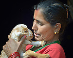 Bishnu Kumari Banjara holds a goat in Dhawa, a village in the Gorkha District of Nepal. Following the 2015 earthquake that ravaged Nepal, she received several baby goats from Dan Church Aid, a member of the ACT Alliance, as a way to earn a livelihood and restart the village economy. Helping people in this and other largely Dalit villages has been a priority for ACT Alliance agencies.