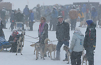 Saturday February 25, 2006 Willow, Alaska.  Handlers hold back a team at the start day of the Junior Iditarod sled dog race.  Willow Lake.