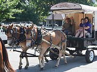 A wagon participates in the Harrison Roundup Club's wagon train Friday, June 19, 2020, as they pass through downtown Harrison. Nine wagons and 49 horses left the Northwest Arkansas District Fairgrounds in Harrison and traveled through downtown before heading out on a five-day and five night trip to Blue Springs located just east of Springdale. The annual wagon train, a tradition since 1977 normally would arrive to participate in the Rodeo of the Ozarks parade in Springdale but because of the covid-19 pandemic, the rodeo has been postponed. Visit nwaonline.com/200620Daily/ and nwadg.com/photos for a photo gallery.<br /> (NWA Democrat-Gazette/David Gottschalk)