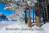 Marek, CHRISTMAS LANDSCAPES, WEIHNACHTEN WINTERLANDSCHAFTEN, NAVIDAD PAISAJES DE INVIERNO, photos+++++,PLMP01052Z,#xl#