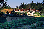 Sunrise light on Byington Vineyard & Winery, Santa Cruz Mountains, California