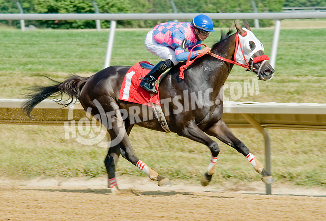 It's Never Too Late winning at Delaware Park on 7/16/12