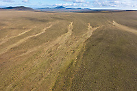 Caribou trails in the tussock tundra of the Arctic North Slope, Alaska.
