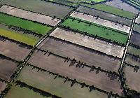 4415/ Knick: EUROPA, DEUTSCHLAND, SCHLESWIG-HOLSTEIN, (EUROPE, GERMANY), 02.10.2007: Knick, Knicke, Knicks, Norddeutschland, Schleswig-Holstein, wallartige Baum- und Strauchhecken, Verkoppelung, lebende Zaeune,  Wand, Gestruepp, Gebuesch, Feldbegrenzung, Brennholzlieferanten und Schutz gegen aeolische Erosion (Abtrag durch Wind). Haselnussstraeucher, Hainbuchen, Eschen, Buchen, Eichen. Dornenstraeucher, Heckenrosen, Sanddorn, Brombeeren, Schlehdorn, Landwirtschaft, Herbst, Feld, Luftbild, Aufwind-Luftbilder...c o p y r i g h t : A U F W I N D - L U F T B I L D E R . de.G e r t r u d - B a e u m e r - S t i e g 1 0 2, .2 1 0 3 5 H a m b u r g , G e r m a n y.P h o n e + 4 9 (0) 1 7 1 - 6 8 6 6 0 6 9 .E m a i l H w e i 1 @ a o l . c o m.w w w . a u f w i n d - l u f t b i l d e r . d e.K o n t o : P o s t b a n k H a m b u r g .B l z : 2 0 0 1 0 0 2 0 .K o n t o : 5 8 3 6 5 7 2 0 9.C o p y r i g h t n u r f u e r j o u r n a l i s t i s c h Z w e c k e, keine P e r s o e n l i c h ke i t s r e c h t e v o r h a n d e n, V e r o e f f e n t l i c h u n g  n u r  m i t  H o n o r a r  n a c h M F M, N a m e n s n e n n u n g  u n d B e l e g e x e m p l a r !.