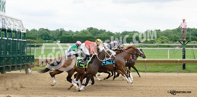 breaking from the gate at Delaware Park racetrack on 6/26/14