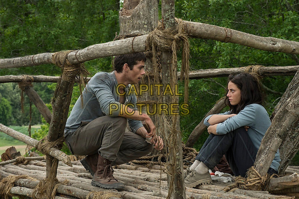 Dylan O'Brien, Kaya Scodelario <br /> in The Maze Runner (2014) <br /> *Filmstill - Editorial Use Only*<br /> CAP/FB<br /> Image supplied by Capital Pictures