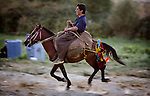 An Iranian Kurdish smuggler rides into a smuggling staging area on the Iran-Iraq border on Wed. Sept. 20, 2006.