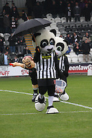 St Mirren v Ross County 171113