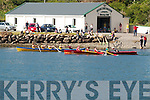 The Sive and Valentia crews battling it out in the Senior Ladies at the Sive Regatta in Cahersiveen on Sunday the first of the South and Mid Kerry Regatta's of 2014.