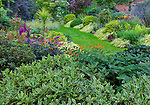 Vashon-Maury Island, WA: Overlooking a summer perennial bed with leaves of a daphne bush in foreground