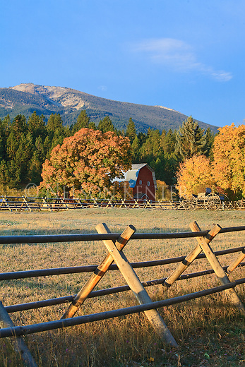 Autumn colors and a red barn in the Bitterroot Valley near Hamilton, Montana
