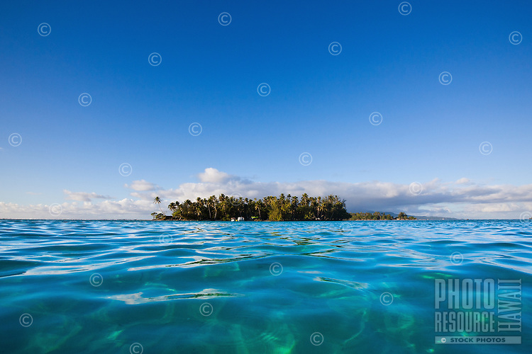 Palm lined islet seen from lagoon