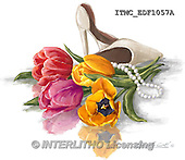 Marcello, FLOWERS, BLUMEN, FLORES, paintings+++++,ITMCEDF1057A,#F# ,female,tulips ,everyday