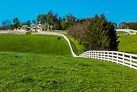 Lexington-Horse Farms-Calumet Farm