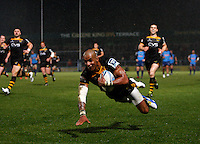 Wasps v Grenoble 20131215