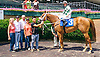 Special of Course winning at Delaware Park on 6/28/16